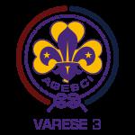 logo Varese 3